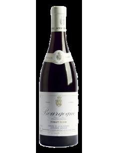 Antonin Guyon Bourgogne...